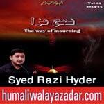 http://www.humaliwalayazadar.com/2014/11/syed-razi-hyder-salam-marsiya-2015.html