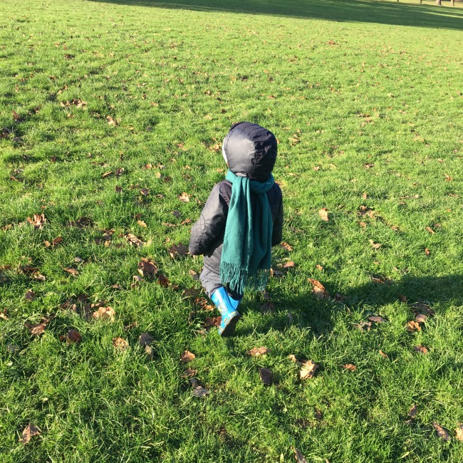Sun-and-ice-toddler-on-grass-in-park