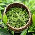 Унікальні властивості зеленого чаю