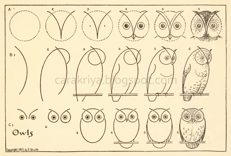 Cara Kriya Cara Mudah Menggambar Burung