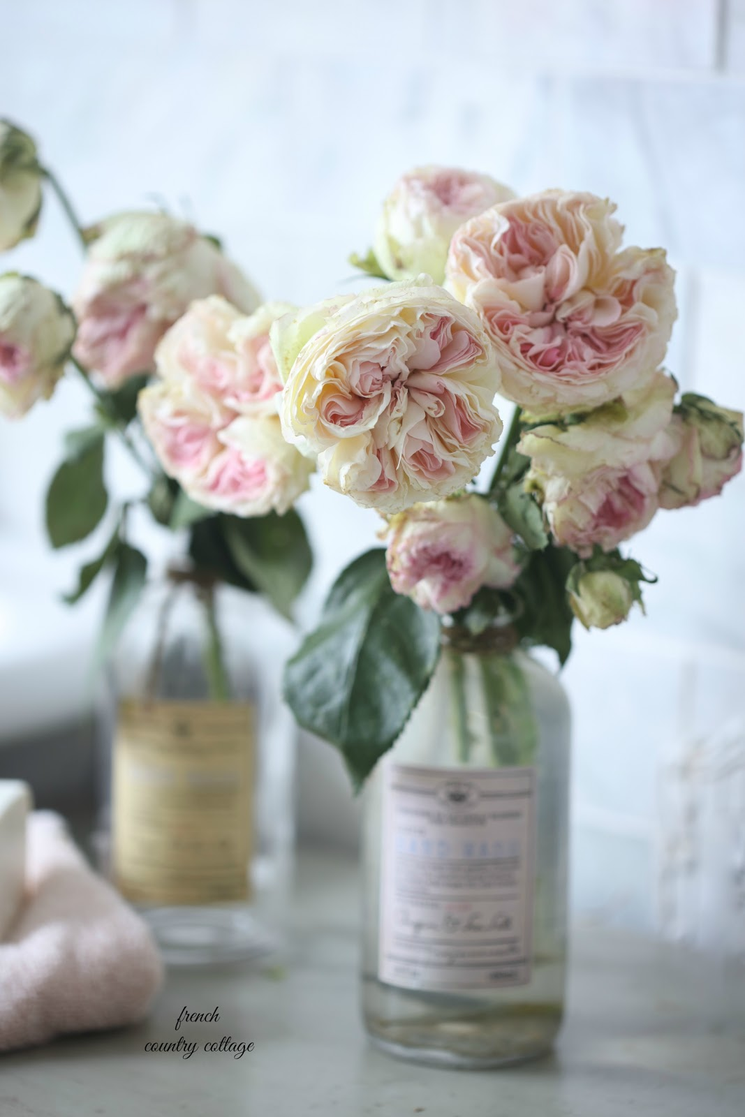 5 reasons why i am obsessed with pretty bottles french country cottage i stood in the bathroom aisle and picked up each and every bottle mightylinksfo