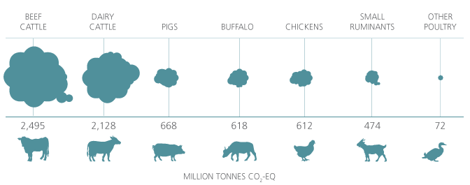 Cattle are the main contributor to the sector's emissions with about 4.6 million tonnes CO2