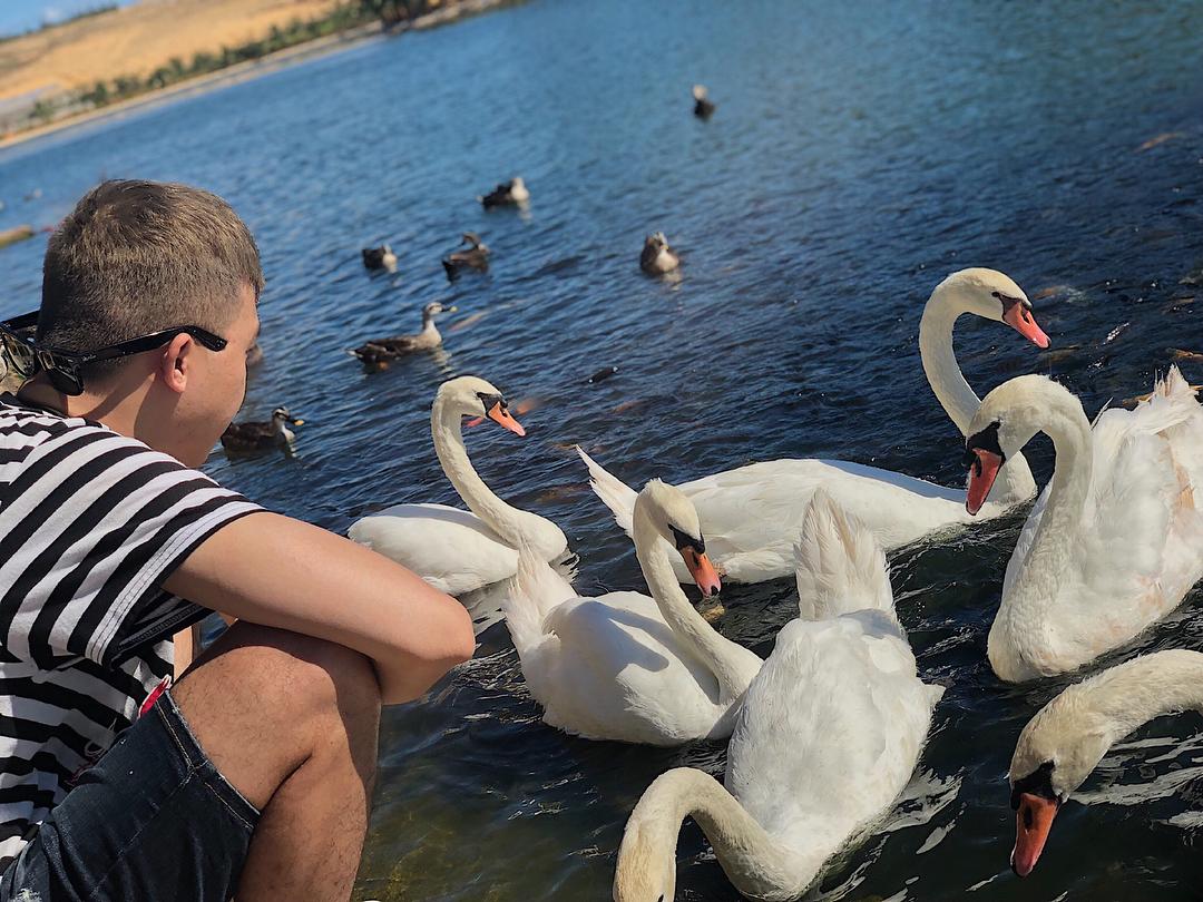 FLC Zoo Safari Park Quy Nhơn thu hút sự quan tâm của rất nhiều bạn trẻ