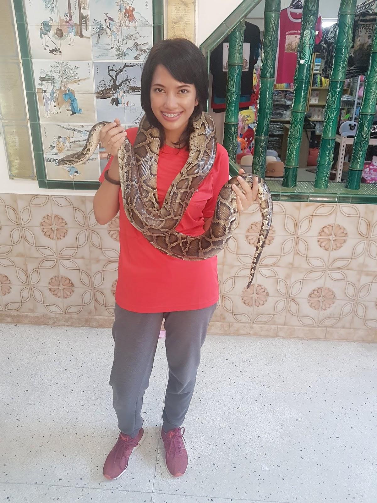 Hug a python at Penang Snake Temple | Ummi Goes Where?