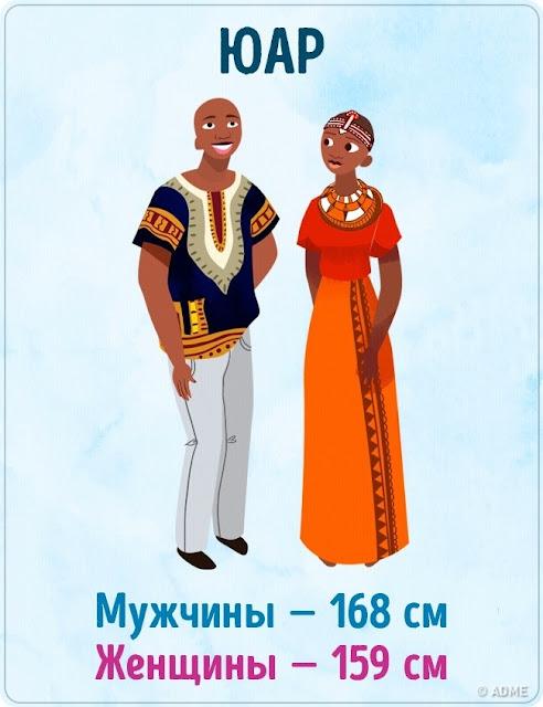 урок русского числительные