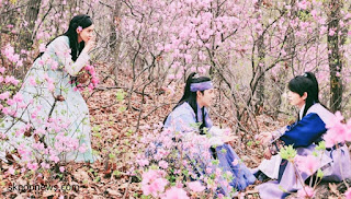 Drama korea the kings loves