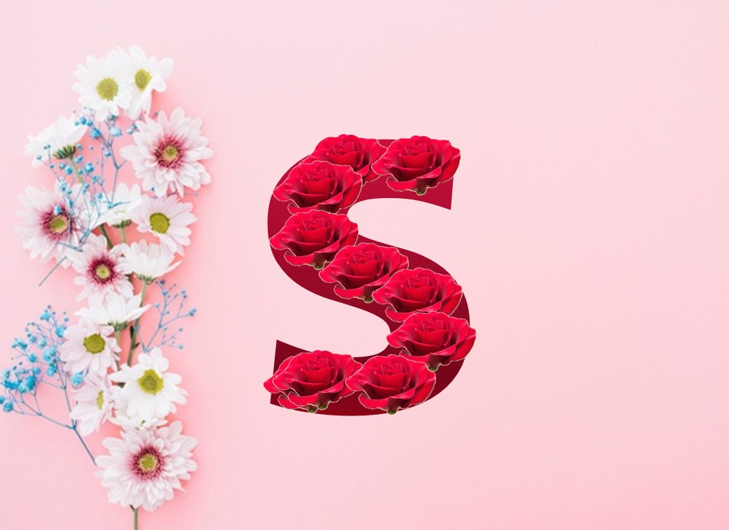 حرف S بالورد الأحمر الجميل