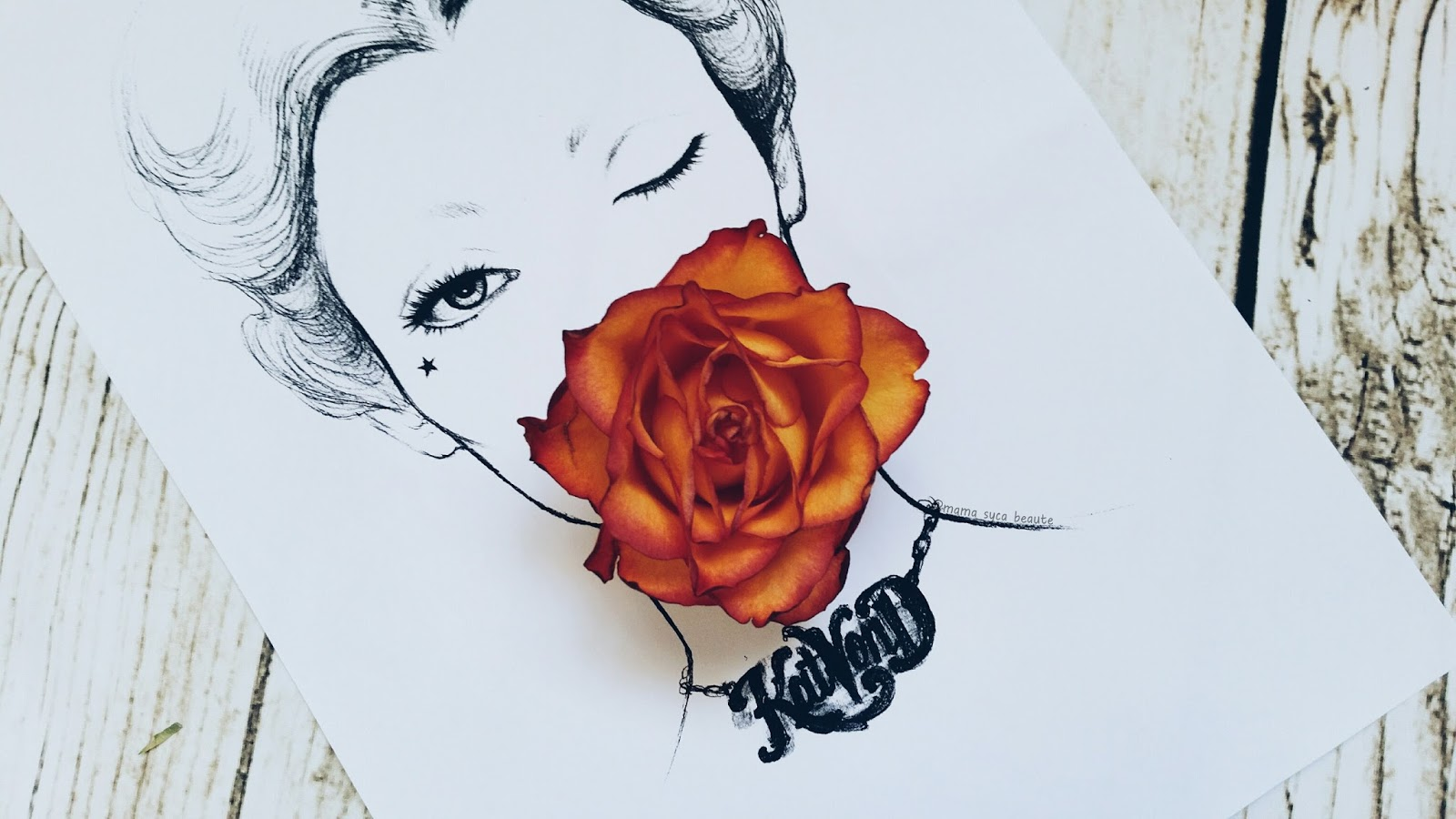 face-chart-kat-von-d-france-mama-syca-beaute