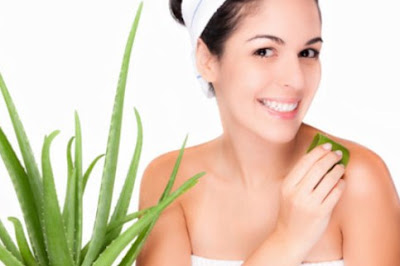 Manfaat Lidah Buaya untuk Kecantikan Kulit Wajah