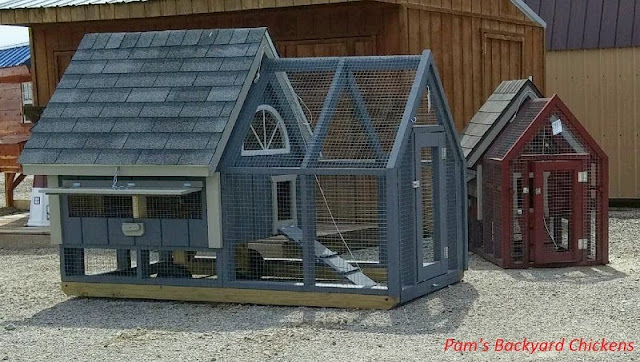 Here's a look at some basic pre-made chicken coops through a veteran chicken keeper's eyes.
