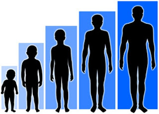 Pertumbuhan tinggi tubuh pada insan akan berhenti pada ketika usia ketika  remaja sekitar  Cara Meninggikan Badan
