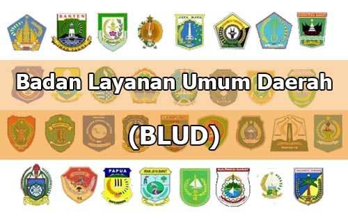 Latar Belakang Badan Layanan Umum Daerah (BLUD)