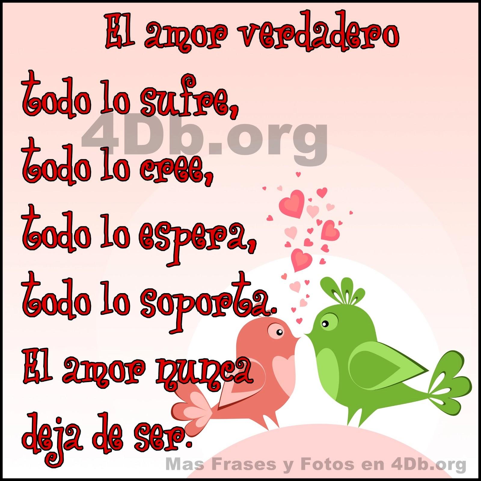 Frases De Amor El Amor Verdadero