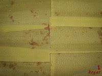 Lasaña de carne a la boloñesa-tercera capa de pasta