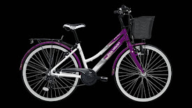 sepeda city bike
