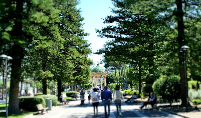 giardini pubblici, alberi, aiuole