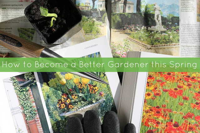 How to Become a Better Gardener this Spring
