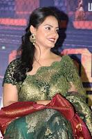 Neetu Chandra in Transparent Saree Jari work Blopuse choli At Vaigai Express Trailer Launch 5.jpg