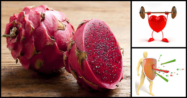 Amazing Benefits Of Dragon Fruit Dr Farrah Md