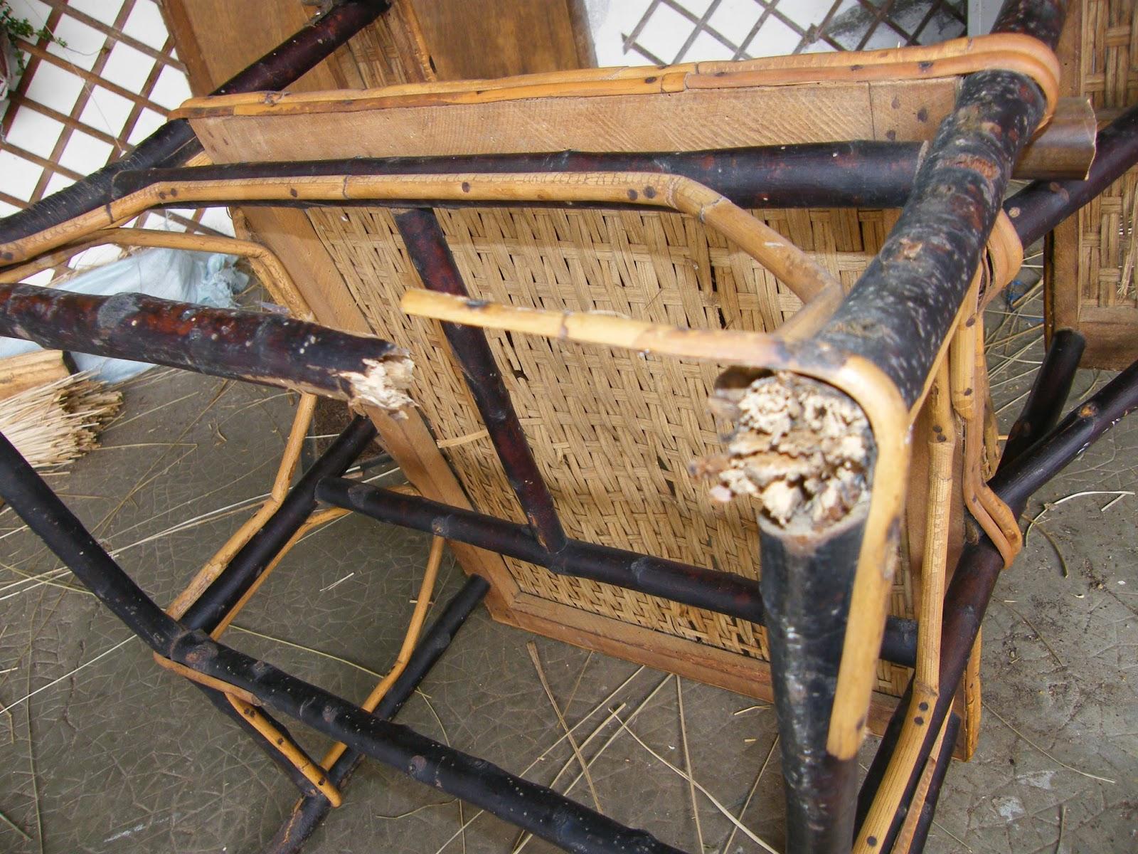 normandie cannage r novation d 39 une chaise longue en rotin. Black Bedroom Furniture Sets. Home Design Ideas