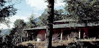 carlton-cottage, dharamkot, kangra, himachal-pradesh