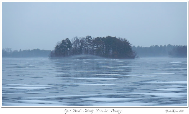 Spot Pond: Misty Traveler. Passing.