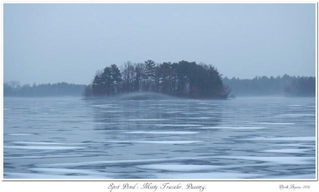 Spot Pond: Misty Traveler. Passing.