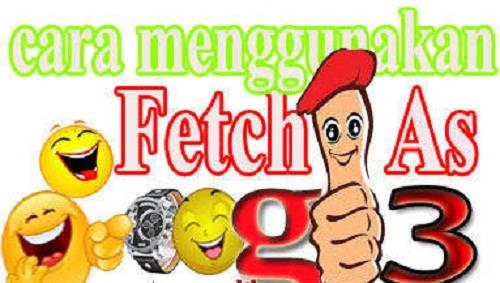 Bagaimana Cara Melakukan atau Menggunakan Fetch as Google