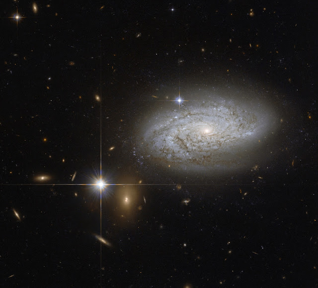 NGC 3021 Galaxy
