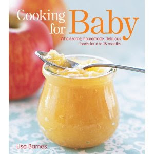 Beach Bum & Baby: Making Baby Food FAQ