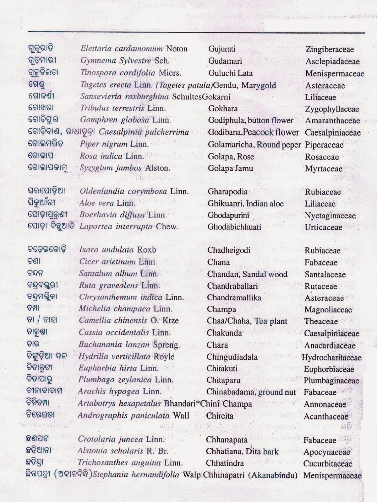 Image Result For List Of