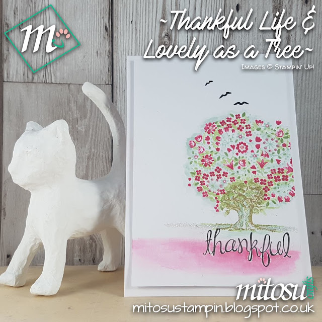Stampin Up UK Thankful Life Lovely as a Tree Jay Soriano Mitosu Shop Stampinup SU Online 2