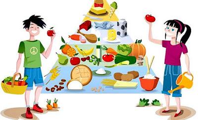 Nutrición humana: nutrición por cada etapa de vida