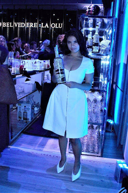 Kelly Fountain at the Belvedere Vodka Party in New York City