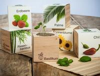 Faire pousser ses plantes Ecocube