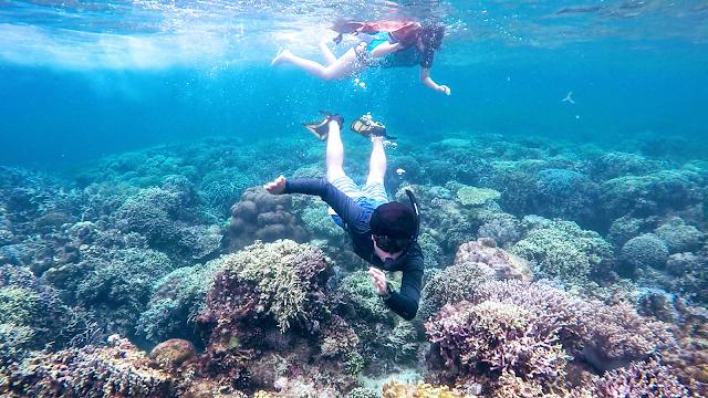 Underwater shot with Arlei owner, Jes Locsin