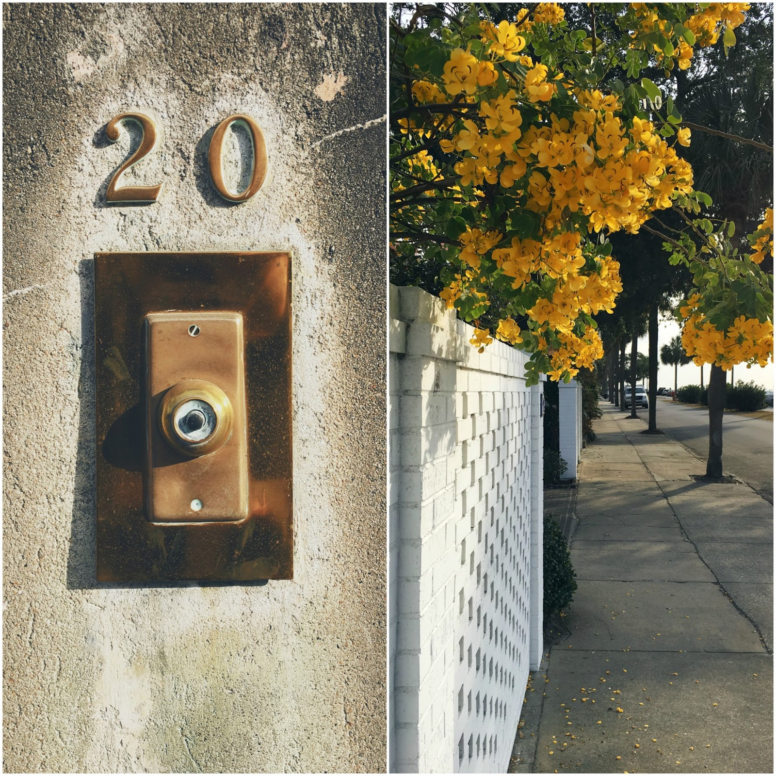 charleston-sc-doorbell
