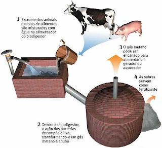 esquema funcionamento biodigestor
