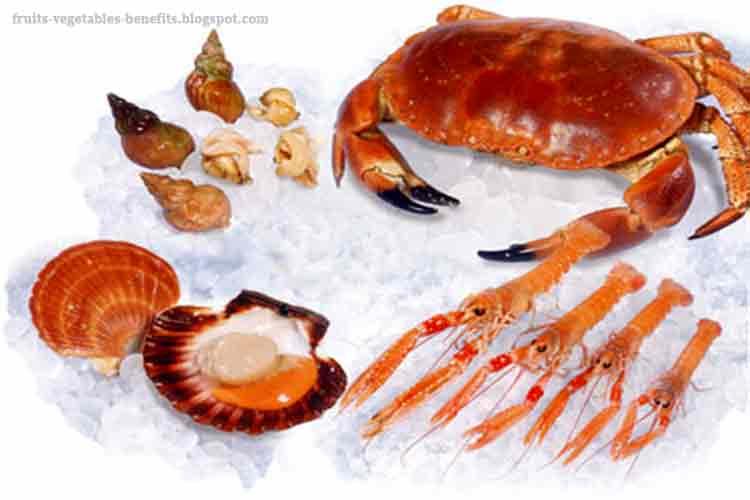 Fruits & Vegetables Benefits: benefits of eating shellfish