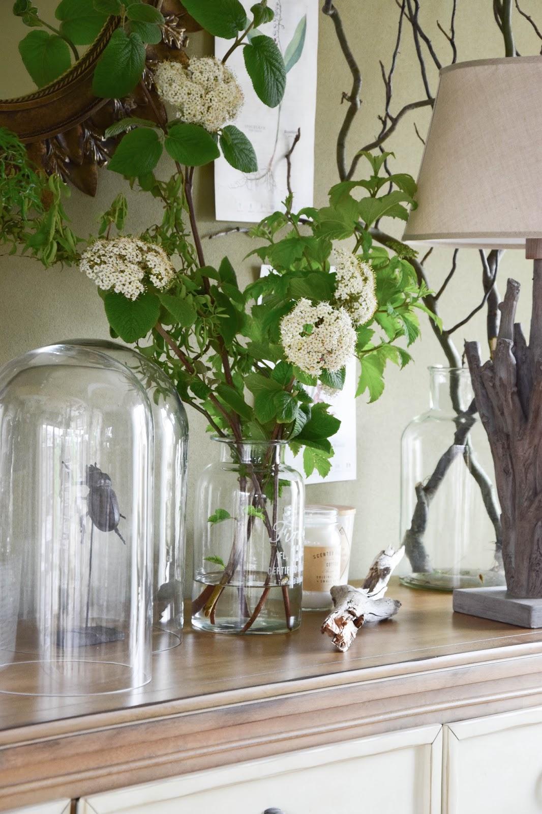Botanische Deko für die Konsole und das Sideboard. Inspirationen, Beispiele und tolle Dekos. Ideen, Dekoidee, Deko, Dekoration Botanik, Sideboard, Wohnzimmer, Schneeball