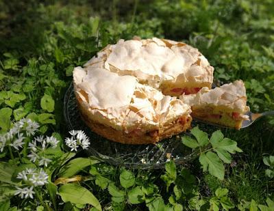 Klassischer Rhabarberkuchen mit Mandelbaiser