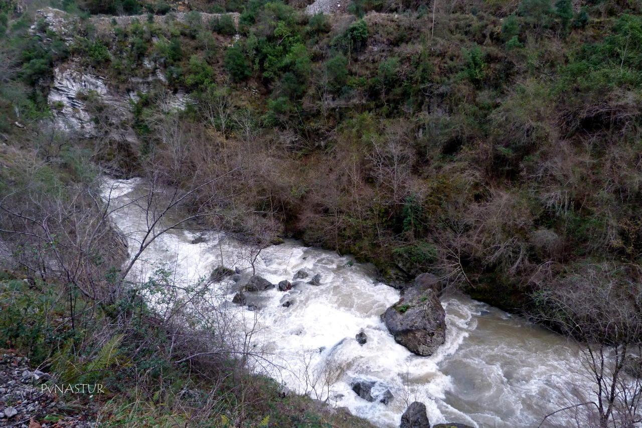 Río Sella en el Desfiladero de Los Beyos - Ponga - Asturias