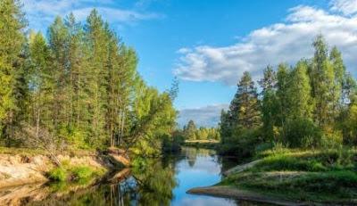 Tingkat Keanekaragaman hayati (Gen, Spesies, Ekosistem)