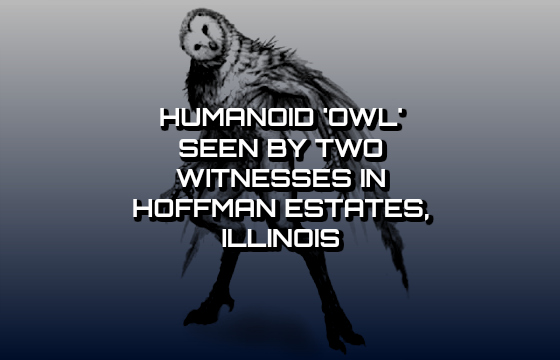 Humanoid 'Owl' Seen by Two Witnesses in Hoffman Estates, Illinois