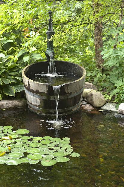 Aquascape Landscape Designing Dream Pond