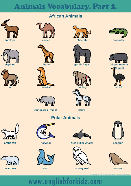 African animals vocabulary and polar animals vocabulary to learn English – printable ESL worksheets