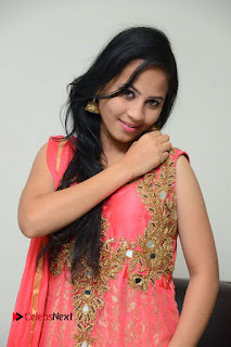 Actress Aasha Rakul Pictures in Red Long Dress at Vetade Puli Audio Launch  0019.JPG