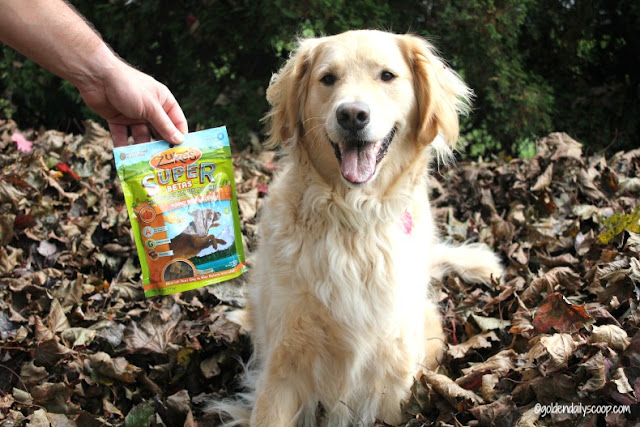 nutritious and soft superfood dog treats
