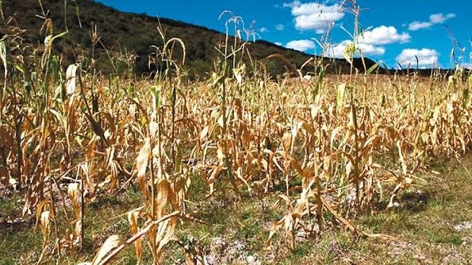 La sequía está agravando el PBI nacional