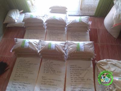 Benih Padi TRISAKTI Pesanan    PT. AIMTOPINDO NK Luwuk Banggai, Sulteng.  (Sebelum di Packing)